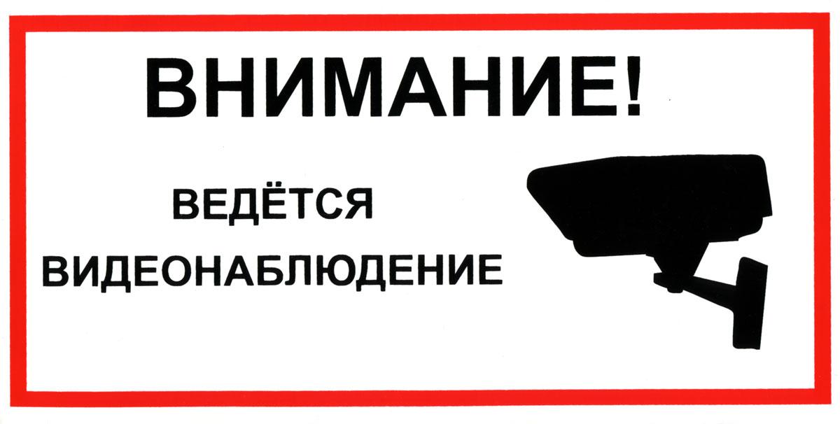 vedetsya-videonablyudenie